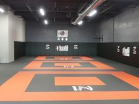 Workout Gym Sound System Grappling Mats - Octasound